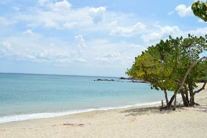 Cheap Flights - A Coral Cove at Trincomalee