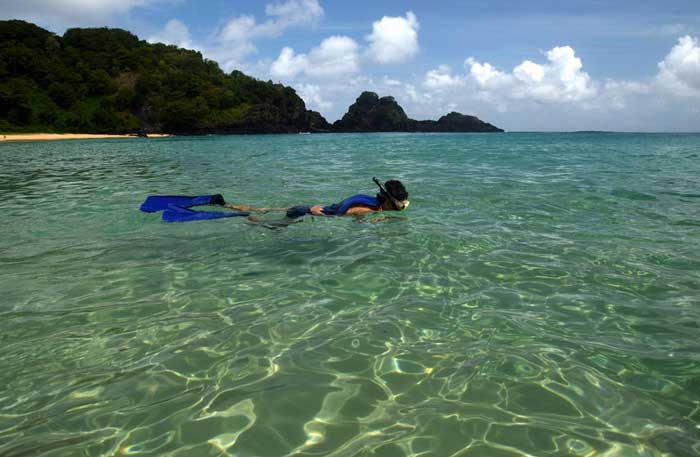 Diving at a crystalline sea beach in Fernando de Noronha,Brazil